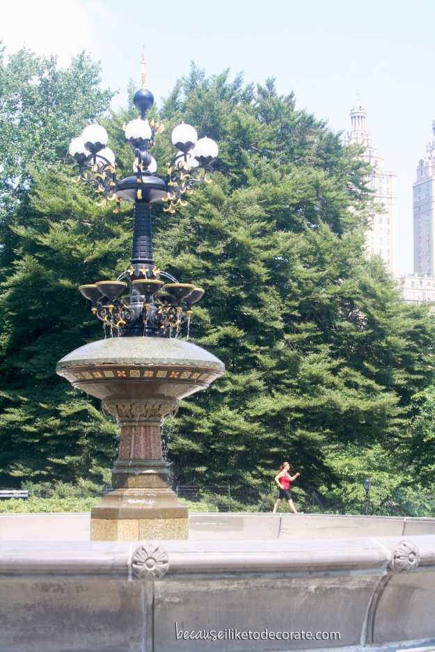 Central Park fountain - NYC